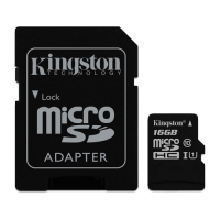 Canvas Select Kingston, micro SDCS kartica sa adapterom, 16GB